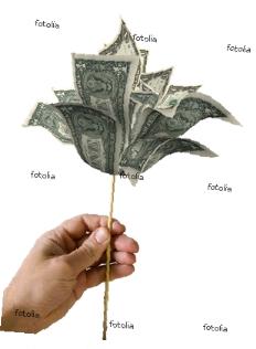 risque pays et impact sur liberalisation financiere